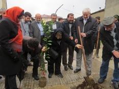 حضورمهندس یوسفعلی جوانی در مراسم درخت کاری شهرستان قائمشهر